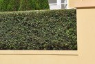 Bullagreen Hard landscaping surfaces 8